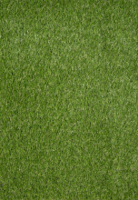 Evergreen 7000 Green