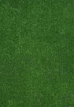 Spring 7000 Green